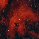 IC 1318,                                Luigi Ghilardi