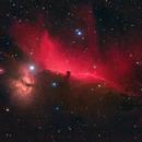 Horsehead Nebula,                    Chris Sullivan