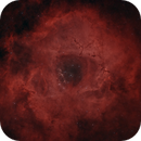 NGC2237 / Rosette Nebula,                                Jeff Donaldson