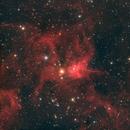 IC 417 Spider & Fly Nebula,                                  John Travis