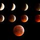 Phasen der Mondfinsternis 21.01.2019,                                Michael Schröder