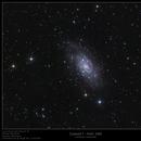 Caldwell 7 - NGC 2403,                    Frank Schmitz