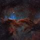 NGC 6188 - The Dragons of Ara,                                Gary Imm