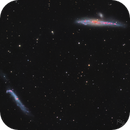 Old Mornings Dawn ( Whale and Crowbar Galaxies-- NGC 4631 & NGC 4656 ),                                Reza Hakimi