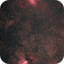 recently on the main street of the Milky Way : M16 and M17,                                  Niko Geisriegler