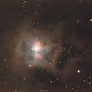 NGC 7023 Iris Nebula,                                John