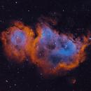 Soul Nebula SHO,                                Bob J