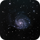 M101 LRGB,                                MarcoLuz