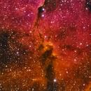 IC1396 Elephant Trunk in HSO,                                Tomeu