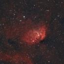 Sharpless 2 - 101 - The Tulip Nebula,                                Sektor