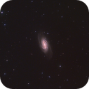 NGC 2903,                                Kathy Walker
