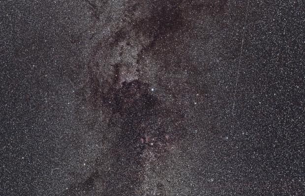 Deneb Region  - Perseid Meteor - Wide Field,                                Matt Stahl