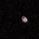 M1 Crab Nebula,                                Phil Montgomery