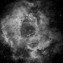 Rosette nebula reprocessed in Ha,                                Mike