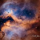 IC 1848 Heart of the Soul,                                Carl Weber