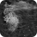 IC405 - Flaming Star HA (Fovo last light),                                Paddy Gilliland