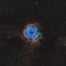 The Rosette Nebula,                                Chris Parfett @astro_addiction