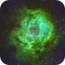 NGC 2237,                                Edoardo Perenich