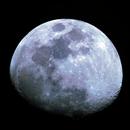 Lua,                                Joao Neves