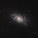 Triangulum Galaxy,                                Marcin Kuś