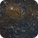 NGC1333 - Widefield,                                Claus Steindl
