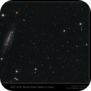 NGC 4236 Barred Spiral Galaxy in Draco,                                Mike Oates