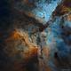 Flying into the Carina Nebula,                                Bogdan Borz