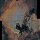 NGC7000,                                TEAM_NEWASTRO