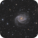 NGC 2997 - Spiral Galaxy in Antlia,                                  Martin Junius