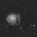 The Faint Arms of M101,                                Callum Hayton