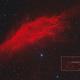 An Asteroid near California (516 Amherstia near NGC1499),                                Kees Scherer