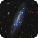 NGC 4236,                                sky-watcher (johny)