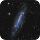 NGC 4236,                                sky-watcher (johny)