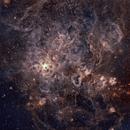 Trantula Nebula (NGC2070) @ Ha-HOO & RGB Stars,                                Wolfgang Zimmermann