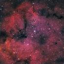 IC1396,                                Michael