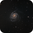M101 - Pinwheel Galaxy with RASA 11 and Hobym Crux HD 320 Mount,                                Ray's Astrophotography