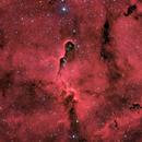IC1396 - Elephant's Trunk Nebula,                                Dustin Smith