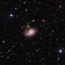 NGC772,                                  Bart Delsaert