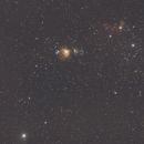 Orion,                                kotkc