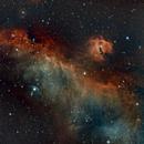Seagull Nebula (IC2177),                                whoseideawasthis