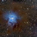 NGC7023 Iris Nebula,                                  Jerry Macon