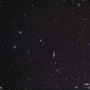 M97 Owl Nebula & M108,                                Molly Wakeling