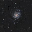 M101,                                Bob J