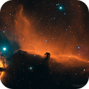 IC 434, The Horsehead Nebula & Flaming star,                                Jeff Bennett