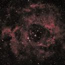 Rosetta Nebula 1-24-17,                                Banjo_Charlie