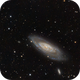 "Welcome to Leonardo, born at 1:06 ^_^ - Here is ""his"" galaxy, obviously M106!,                    Luigi Fontana"