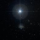 Leo I Dwarf Galaxy (UGC5470, Regulus Dwarf, PGC29488),                                Mau_Bard