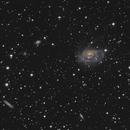Arp 184  (NGC1961),                                Patrice RENAUT