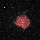 NGC 2174 the Monkey Head Nebula,                                RonAdams