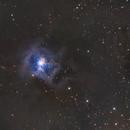 Iris Nebula,                                  HomerPepsi